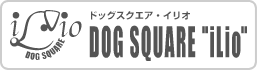 Dog Square iLio(イリオ)